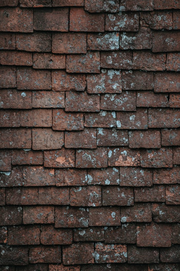 how long do shingles last